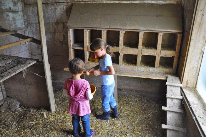 Kinder-Aktivitäten am Kinderbauernhof Obersulzberggut in Radstadt, Salzburger Land