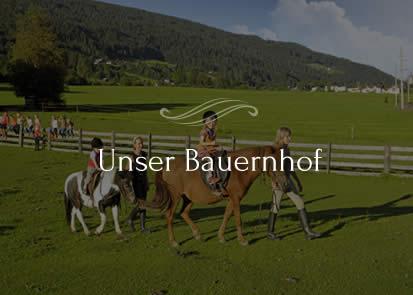 navi-bauernhof-obersulzberggut