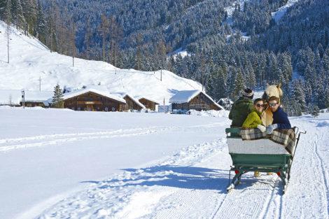 Winterurlaub & Skiurlaub am Obersulzberggut in Radstadt, Salzburger Land - Pferdeschlittenfahrt im Ski amadé